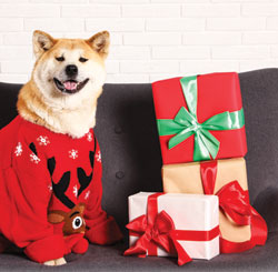 Perfect Pet Presents