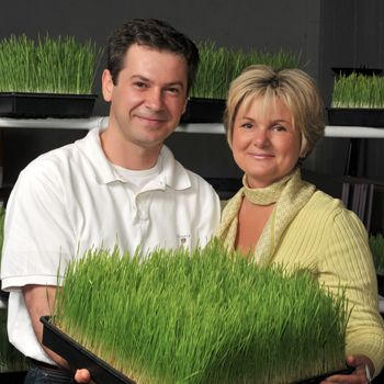 Wheatgrass and Sprouts